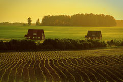 Il paesaggio nei campi della regione di Kaluga in Russia Immagine Stock Libera da Diritti