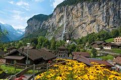 Il paesaggio pittoresco con i fiori, una cascata ed il canyon c Immagini Stock Libere da Diritti