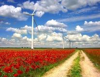 Il paesaggio rurale con le turbine di vento sui papaveri progetta Immagini Stock