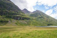 Altopiano scozzese Fotografia Stock Libera da Diritti