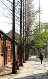 Il paesaggio in una città universitaria, Chengdu, porcellana Fotografia Stock