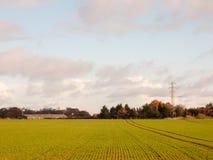 Il paese crescente verde di scena del paesaggio del terreno coltivabile di autunno con elegge Fotografie Stock Libere da Diritti