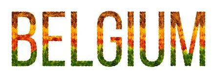 Il paese del Belgio di parola è scritto con le foglie su un fondo isolato bianco, un'insegna per la stampa, un creativo Fotografia Stock