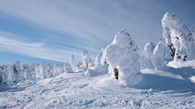 Il paese delle meraviglie di inverno Fotografie Stock