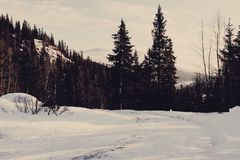 Il paese delle meraviglie di inverno Fotografie Stock Libere da Diritti