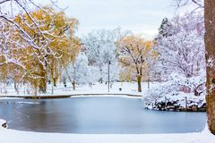 Il paese delle meraviglie di inverno di Boston fotografie stock