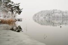 Il paese delle meraviglie di inverno dell'annata Fotografia Stock