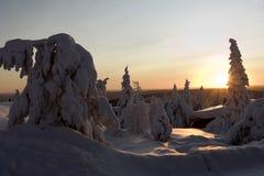 Il paese delle meraviglie di inverno della Lapponia Fotografie Stock Libere da Diritti