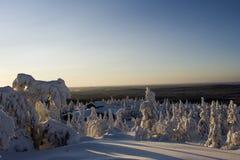 Il paese delle meraviglie di inverno della Lapponia Immagini Stock