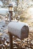 Il paese delle meraviglie di inverno di Tucson Fotografie Stock Libere da Diritti