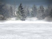 Il paese delle meraviglie di inverno, natale Fotografie Stock Libere da Diritti