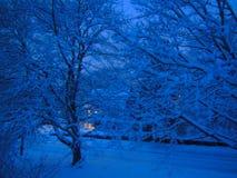 Il paese delle meraviglie di inverno di primo mattino fotografia stock