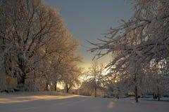 Il paese delle meraviglie forte di inverno del parco della collina Fotografia Stock Libera da Diritti