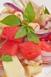 Il paleo dell'insalata dell'anguria, del cetriolo e della cipolla rossa è a dieta Immagine Stock Libera da Diritti