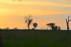 Il pallone dell'alba supera Serengeti Fotografie Stock