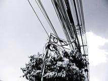 Il palo elettrico si collega al modo elettrico ad alta tensione di colore dei cavi in bianco e nero Fotografia Stock