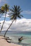 Il Panama 1019 Fotografia Stock Libera da Diritti