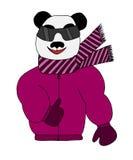 Il panda variopinto è vetri di sole in un rivestimento ed in una sciarpa dell'inverno illustrazione di stock