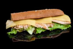 Il panino con il raccordo ha grigliato il pollo, gli ortaggi freschi, il formaggio ed i verdi, isolati su fondo nero immagine stock