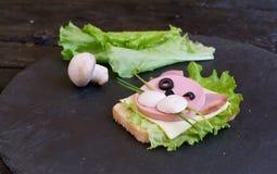 Il panino dei bambini con la salsiccia ha fatto sotto forma di gatto Opzione del servizio dei bambini fotografia stock