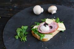 Il panino dei bambini ha fatto sotto forma di cane Opzione del servizio dei bambini immagine stock libera da diritti