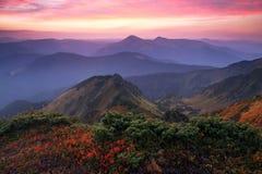 Il panorama con l'alba interessante chiarisce i dintorni Paesaggio con le belle montagne e pietre Paesaggio fantastico di autunno fotografia stock