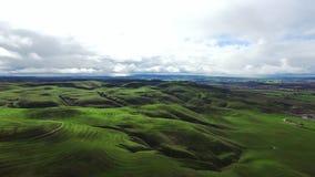 Il panorama meraviglioso ha sparato dei prati e delle colline verdi stock footage