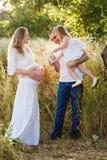 Il papà e la figlia hanno innaffiato la madre incinta della pancia un giorno di estate Fotografia Stock