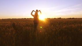Il papà felice porta la sua piccola figlia nelle sue armi sopra un campo di grano nei bei raggi del tramonto Famiglia felice archivi video