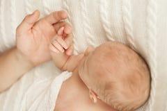 Il papà tiene sua figlia neonata dalla mano immagine stock libera da diritti