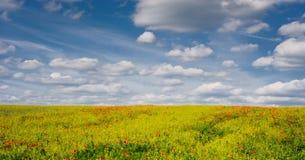 Il papavero e la colza coltivare il campo con cielo blu nuvoloso, campagna ceca Immagini Stock