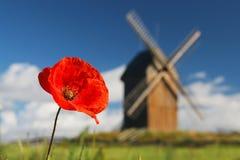 Il papavero ed il mulino a vento Fotografia Stock Libera da Diritti