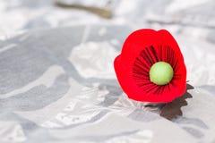 Il papavero rosso è un simbolo della giornata dei veterani della Tailandia Fotografia Stock Libera da Diritti