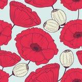 Il papavero rosso fiorisce il modello senza cuciture Fotografia Stock
