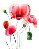 Il papavero stilizzato fiorisce l'illustrazione Immagini Stock Libere da Diritti