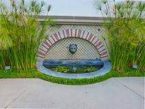 Il papiro pianta il confine una fontana fotografia stock libera da diritti