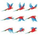 Il pappagallo di animazione vola L'uccello di Sprite vola Immagini Stock Libere da Diritti