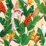 Il pappagallo fiorisce il fondo beige senza cuciture delle foglie Immagini Stock