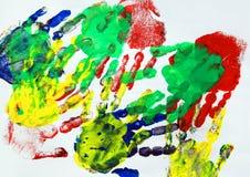 Il pappagallo mette le piume alla struttura esotica Immagine Stock Libera da Diritti