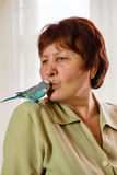 Il pappagallo ondulato si siede sulla spalla della donna fotografia stock