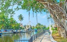 Il parco del canale del ` s di Hamilton in Wattala, Colombo Fotografie Stock Libere da Diritti