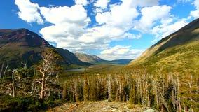 Il parco dell'aster trascura il Montana archivi video
