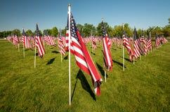 Il parco della città ha riempito di bandiere americane che soffiano nel vento Fotografia Stock
