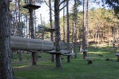 Il parco di avventura nella foresta immagini stock libere da diritti