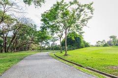 Il parco e l'erba del landscap in città Immagine Stock Libera da Diritti