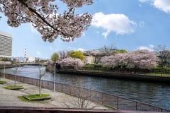 Il parco ed il canale intorno ad Osaka Castle Immagini Stock