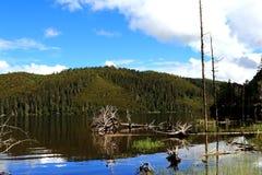 Il parco nazionale della Cina il Yunnan Shangri-La Pudacuo è un lago fotografia stock