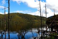 Il parco nazionale della Cina il Yunnan Shangri-La Pudacuo è un lago Immagini Stock