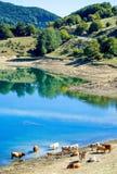 Il parco nazionale di Gran Sasso Immagini Stock Libere da Diritti