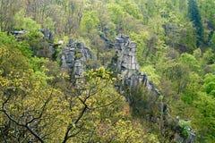 Il parco nazionale di Harz Fotografia Stock